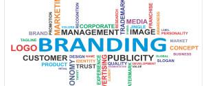 branding si webdesign